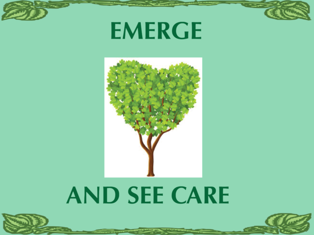 emergeandsee