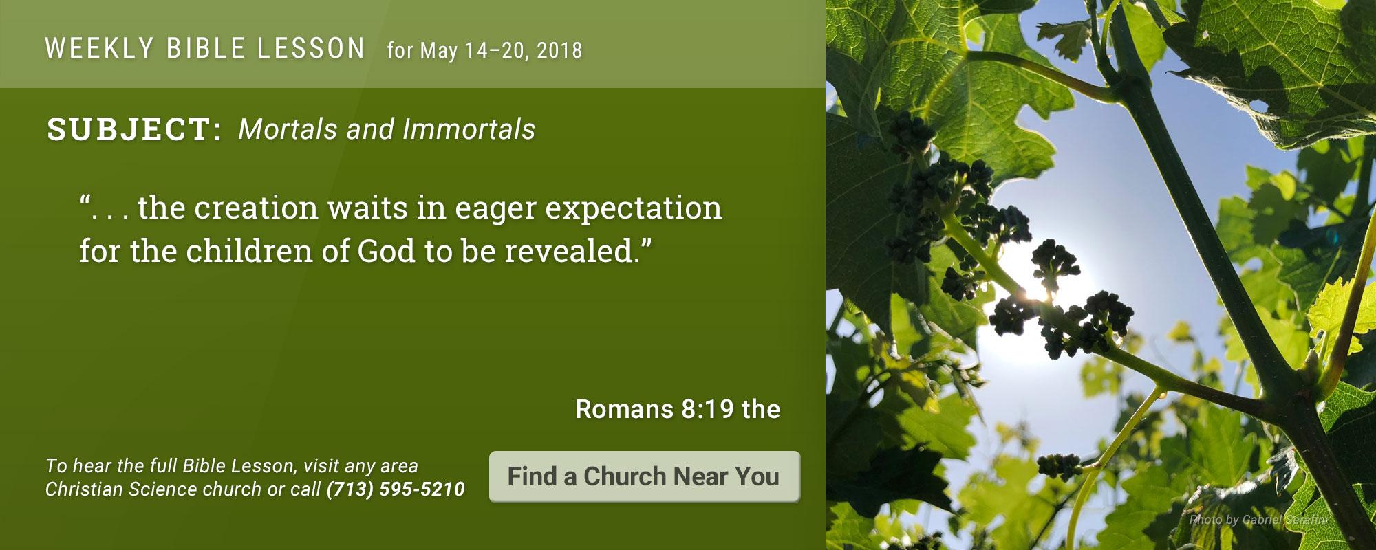 Bible Lesson Golden Text 20171211